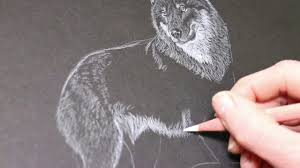 Attached below are the simple steps on how to draw this character. Wolf Drawing In White Pencil On Black Paper Youtube