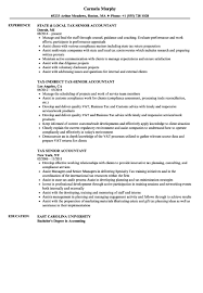 Senior Accountant Resume Sample senior accountant resume samples Ozilalmanoofco 2