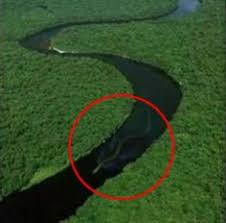 real mythical creatures found alive. Delighful Creatures Villagers Living Along The Baleh River In Borneo Believe Mythical  Serpent Nabau Has Returned After This Photo Of A Gigantic Snake Swimming  For Real Mythical Creatures Found Alive N