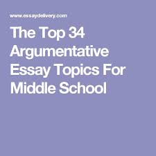 sample argumentative essay the best sample essay ideas on  the 25 best argumentative essay ideas sample argumentative essay
