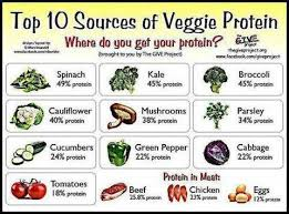 A Plant Friendly Diet Why Does Everyone Ask About Protein