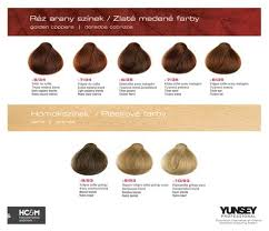 Yunsey Color Chart Yunsey Hair Color Golden Coppers Sands Rubio Claro