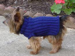 Free Knitted Dog Sweater Patterns Extraordinary Free Knit Dog Sweater Pattern Image Collections Knitting Patterns