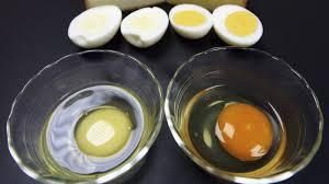 Egg Yolk Colour Chart Help My Egg Yolks Are Freakishly White The Salt Npr