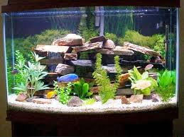 view larger small fish tank decoration