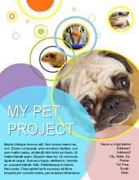 poster samples view flyers brochures letterhead flyer poster etc samples online