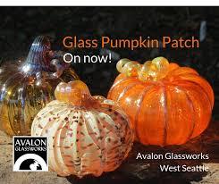 the art glass pumpkin patch 2018