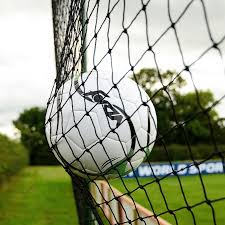 ball stop netting multi sport net world sports