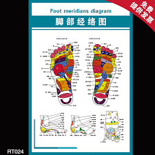 Foot Chinese Medicine Chart Buy Flipchart Human Meridian Points Of Traditional Chinese