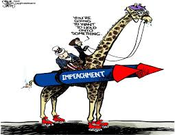 Image result for impeachment cartoon