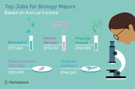 Pharmaceutical Sales Degree Top Jobs For Biology Degree Majors
