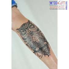 тату сова Owl Tattoo
