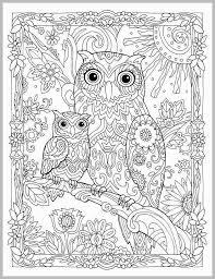 Creative Haven Owls Coloring Book Elegant Kleurplaten Coloring Pages