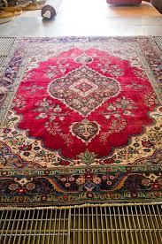 removing cat urine odor from antique oriental rug