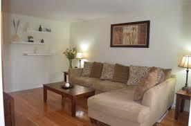 simple living room with african safari decor idea