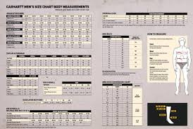 Carhartt Sandstone Bib Overall R06 Carhartt Workwear Bib