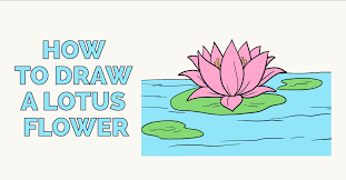 Lotus Flower Color Chart How To Draw A Lotus Flower Really Easy Drawing Tutorial