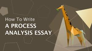 how to write a process analysis essay essayhub how to write a process analysis essay