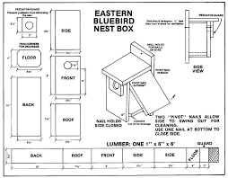 alluring bluebird house plans one board free bird easy build designs
