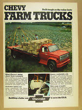 chevy c truck 1973 chevrolet chevy c65 c 65 farm truck produce pickers photo vintage print ad