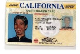 Hairbrn Sexm Fire me Card Fd12 Penguin Disco Brn Me Identification On Expires07-31-2- 8a 09142806 Eyes Meme O Panda California 678
