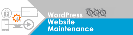 how and where to maintain wordpress website