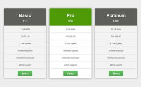 Pricing Template Corporate Pricing Table Selling For 5 00
