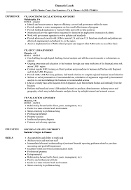 Vp Advisory Resume Samples Velvet Jobs