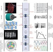 Integrated Multiscale Biomaterials Experiment And Modelling