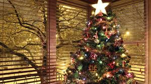 Christmas Tree Wallpapers Hd Images ...