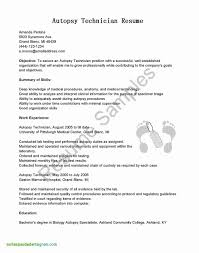 Resume Format Microsoft Word New Resume Format Microsoft Word Best Of Resume Format Microsoft Word