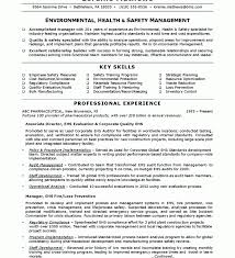 Download Safety Manager Resume