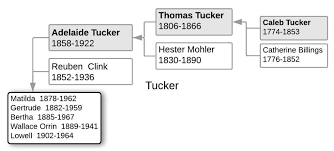 The Tuckers of Ohio – Billick Family History