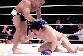 Resultado de imagem para MMA japonês, Sakuraba