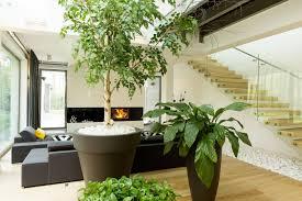 indoor gardening. Indoor Gardening W