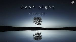 Good Night Quotes Adorable Good Night Quotes The Best Wishes To Help You Sleep Tight