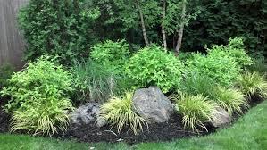 rain garden takes sump pump water runoff