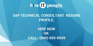 Sap Technical Consultant Resume Profile Hire It People We Get