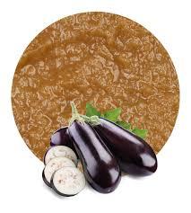 Eggplant Puree Manufacturer And Supplier Lemonconcentrate