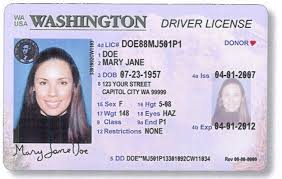 Deviantart visas Passports Novelty Powells1 Real id Cards By And On Purchase