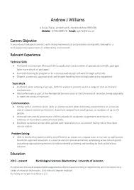 Example Of The Resume Sample Student Internship Resume Template ...