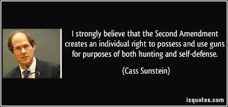 2nd Amendment Quotes Fascinating 48 Second Amendment Quotes QuotePrism