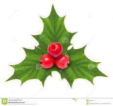 Christmas Decoration Holly Berry Christmas Decoration Isolated Royalty Free Stock Photo