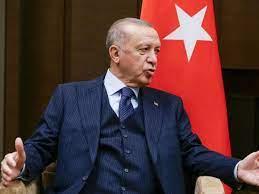 Botschafter unerwünscht: Erdogan stellt Türkei-Beziehungen auf die Probe -  Politik - Stuttgarter Nachrichten