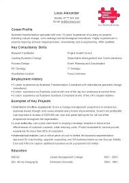 Resume One Job Example Of One Page Resume Two Page Resume Examples ...