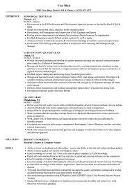 Qa Test Lead Resume Samples Velvet Jobs