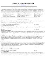 executive resume writer com executive resume writing for executive s management and business e97ztmw9