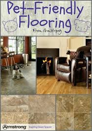 dog proof flooring best pet friendly design images on pets home decor and a