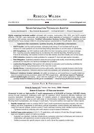Sample Resume For Auditor Position A Good Owner Manual Example