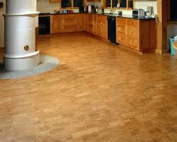 cork floor for bathroom. Cork Floor Pros And Cons Excellent Flooring In Kitchen Gallery Below X . For Bathroom